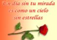 ▷ Imágenes de Amor con Rosas ◁ 🌹