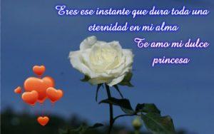 Imágenes de amor con rosas para mi novia