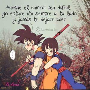 Imagenes De Goku Y Milk Bonitas Imagenes Bonitas