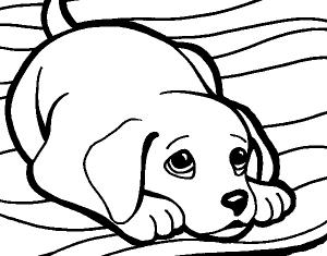 Imágenes de Perros para Dibujar