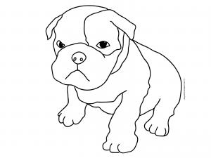perro para dibujar chido
