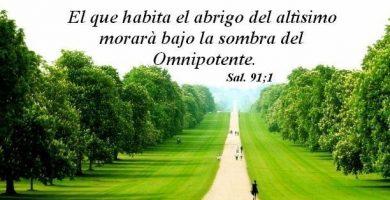imagenes del salmo 91 de portada