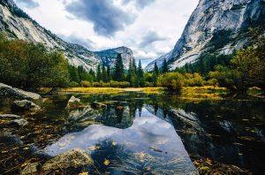 imagenes de bosques y montañas