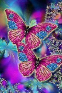 20 Imágenes Bonitas De Mariposas Listas Para Descargar