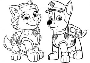 dibujos de patrulla canina