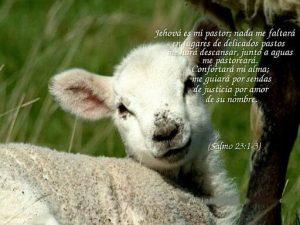imagenes del salmo 23