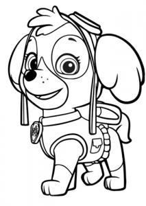 perrito de patrulla canina
