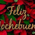 Imágenes de feliz Nochebuena y Navidad