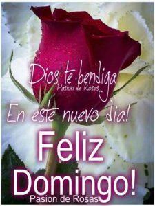 Imágenes De Domingo Las Mejores Para Desear Un Feliz Domingo