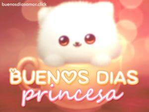 Imágenes de buenos Días Princesa lindas