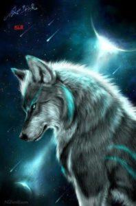 fondos de lobos