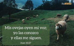 Imágenes para Orar a Dios para bajar