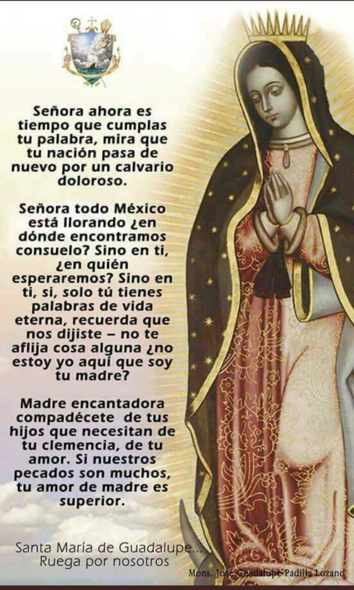 oracion virgen de Guadalupe para whatsApp